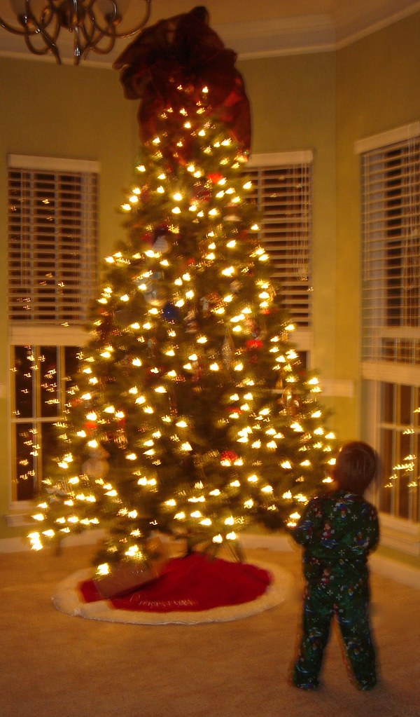 Little boy in front of the Christmas Tree