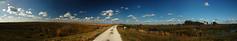 Kissimmee Prairie Panorama 2