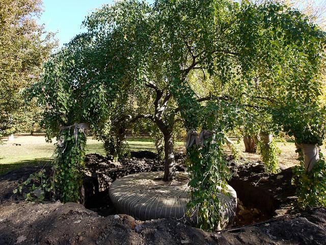 New York Botanical Garden Bronx Ny New York