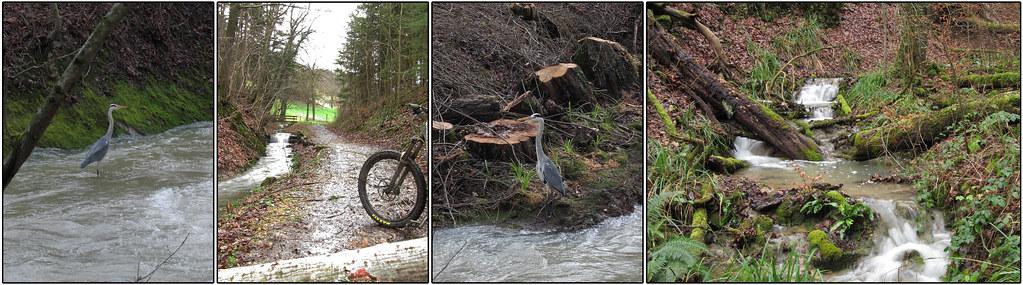 Neu-Jahrs-Wasser- Bike-Tour- Gugger