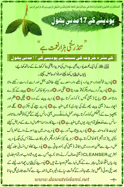 Health is Wealth - 17 Madani Pearls about Pudina