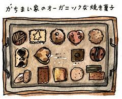 がちまい家のオーガニックな焼き菓子