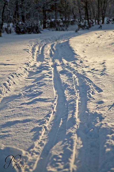 1229 skitur