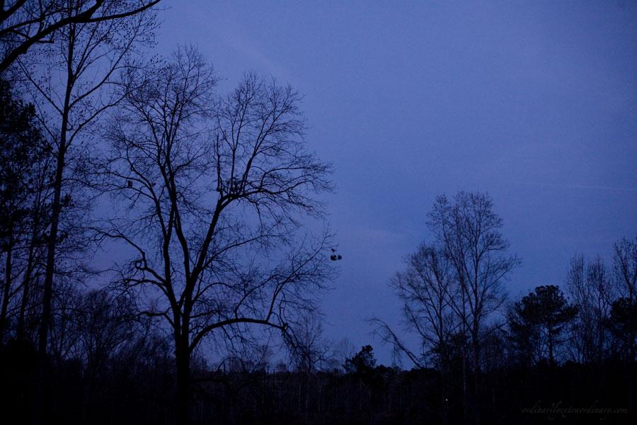 Dec282011_0004