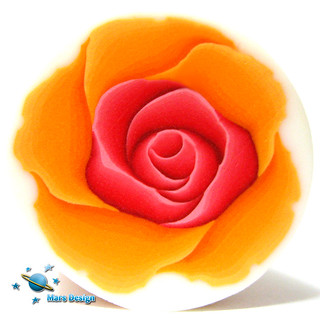 Red orange rose cane