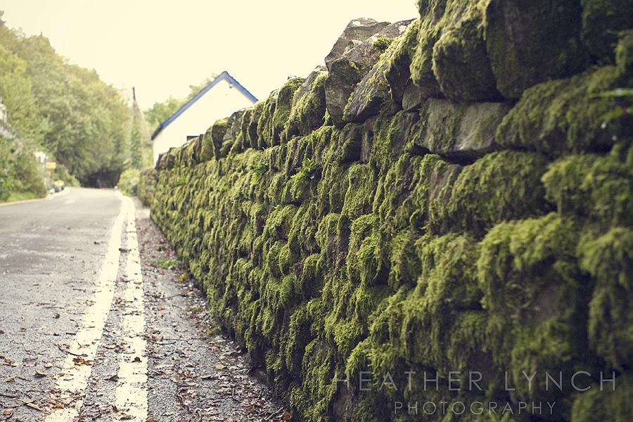 HeatherLynchPhotography_SCO6