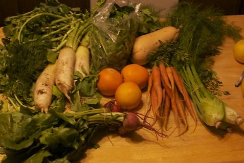 veggies by VlinderM