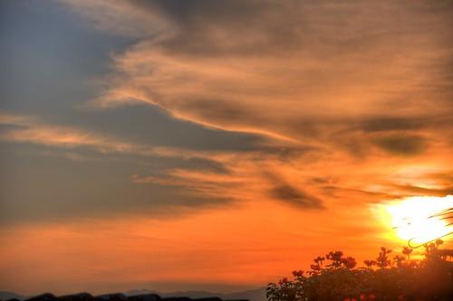 paisajes sun tree sunrise landscapes colombia paisaje amanecer fredonia antioquia