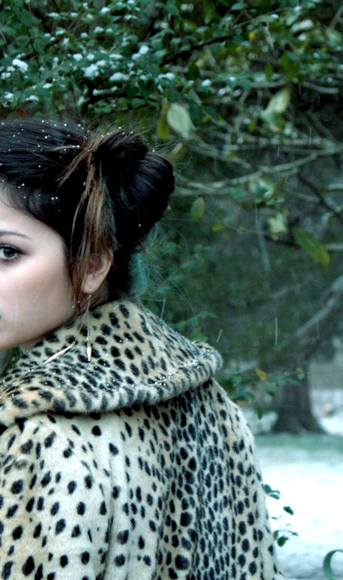snow.leopard