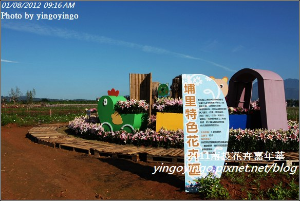 2011南投花卉嘉年華20120108_I2328