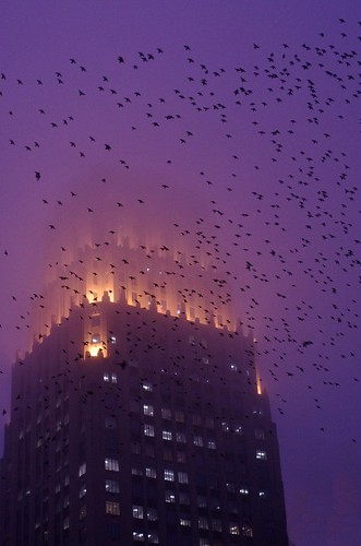 Art Deco on a Foggy Houston Evening by AlphaTangoBravo / Adam Baker