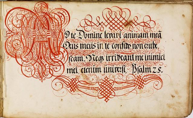 Kalligraphische Schriftvorlagen by Johann Hering b