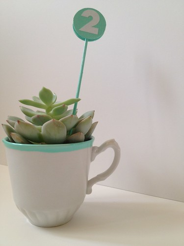 Custom Color Teacup Succulent and Table Number 13