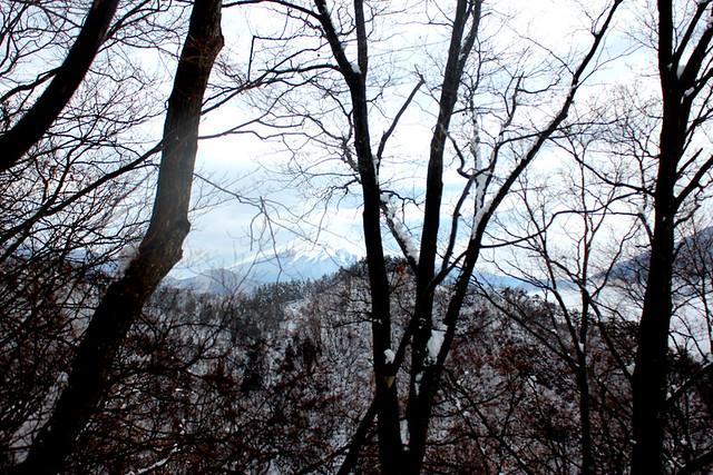 高川山から富士山