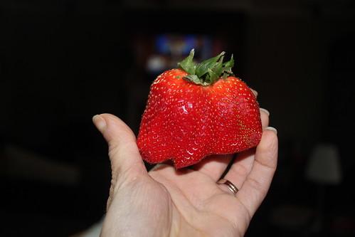 Deformed Strawberry