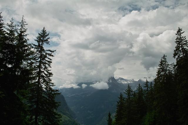 26.06.2009 - Schyniger Platte SDIM0335