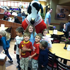 Chickfila cow (and flat Stanley)
