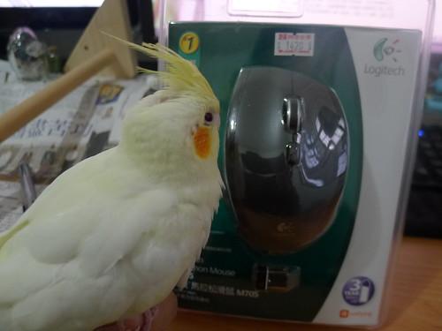 羅技 M705 無線滑鼠 + 粉圓鳥寶