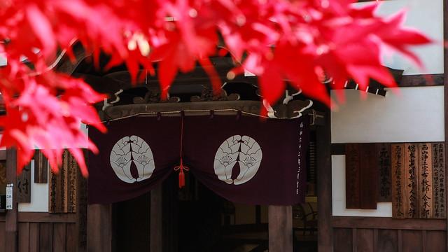 2013_京都_1281