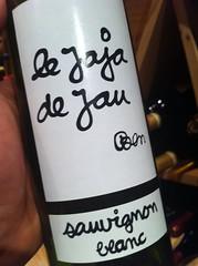 2010 Jaja de Jau Sauvignon Blanc