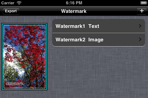 ScreenShot_Watermark1_L