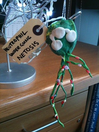 Neutrophil NETOSIS!