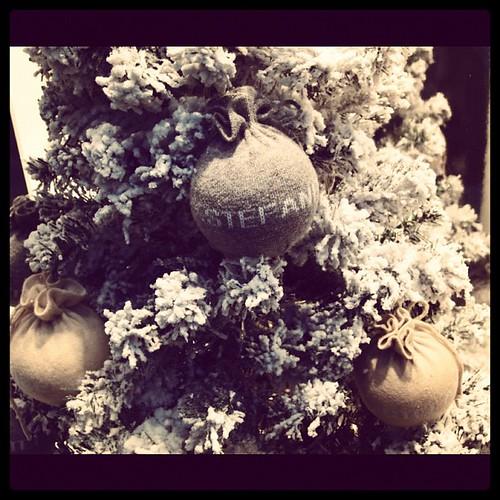聖誕節的氣氛,已經悄悄地,從四面八方鋪撒而來。