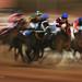 Racing !! by Ali Al-Zaidi