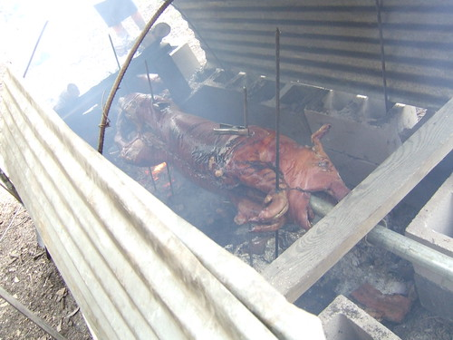 Pig on the pit