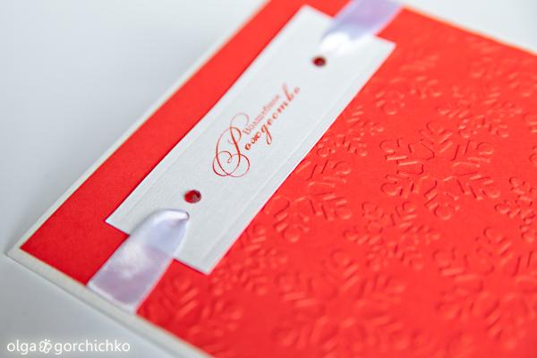 Конверты для дисков для рождественских мини-фотосессий