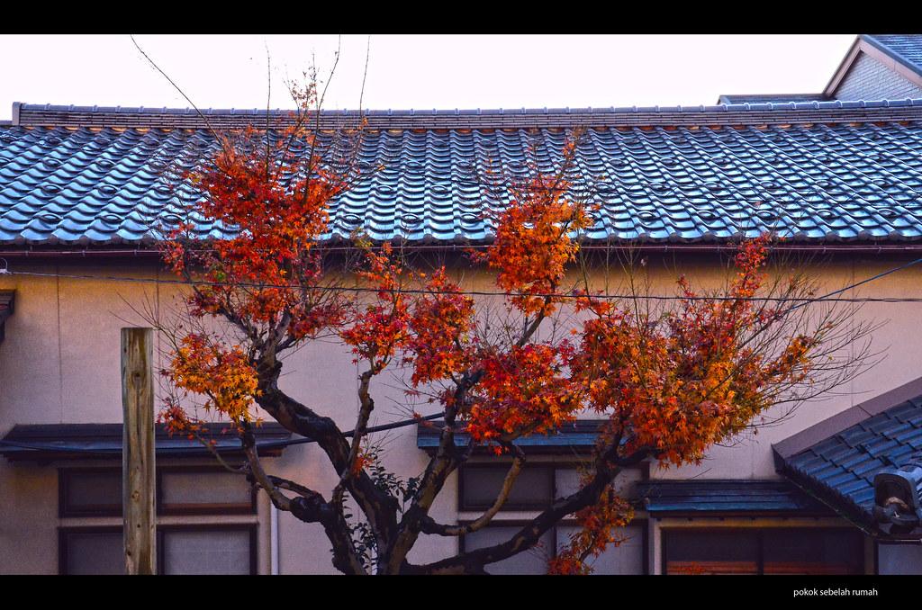 bye autumn