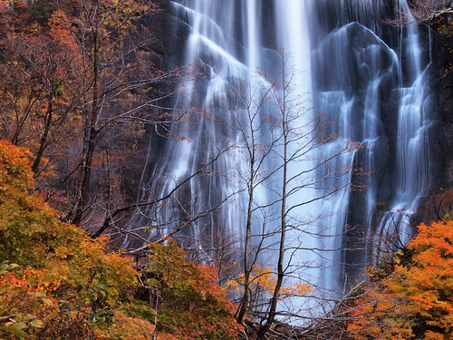autumn japan waterfall akita