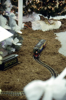 Model railroad running under the trees at Festival of Trees: West Palm Beach, Florida