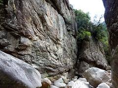 Remontée du Carciara en amont du canyon : nouveau rétrécissement rocheux (vue vers l'aval)