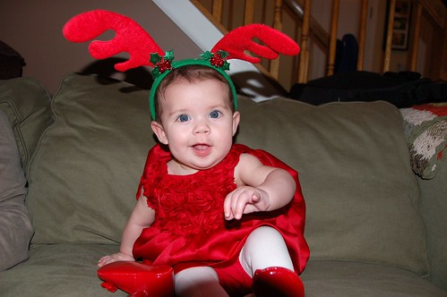 Merry Christmas Eve from reindeer Amelia!