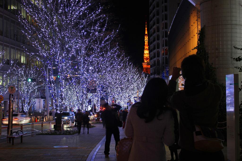 Roppongi Illumination 2011 (8)