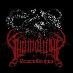 53762_immolith_storm_dragon