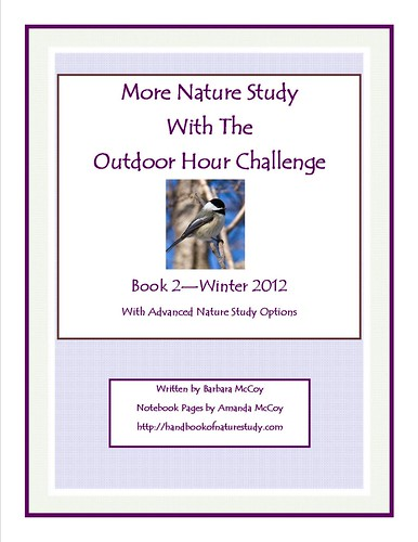 More Nature Study Book 2 Winter Wonder cover