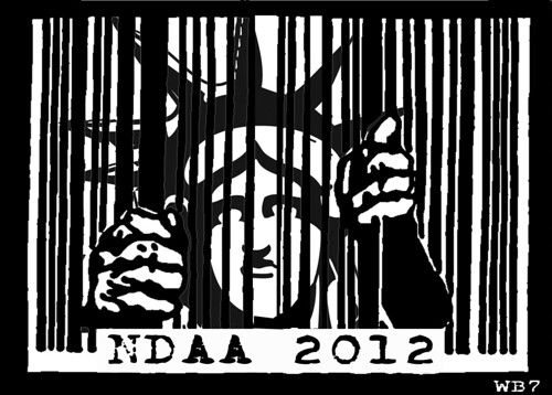 NDAA LIBERTY by Colonel Flick/WilliamBanzai7