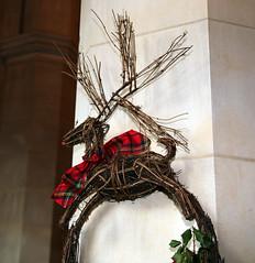 Julbuk 02 - Narthex - National Cathedral - DC