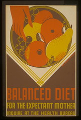 Balanced diet for the expectant mother (LOC)