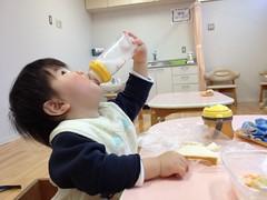 今日の片手哺乳瓶飲みとらちゃん(2012/1/7)