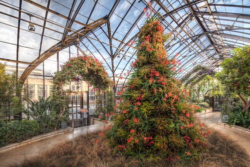 Longwood Gardens at Christmas