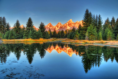 Reflections of Schwabacher Landing and the Tetons