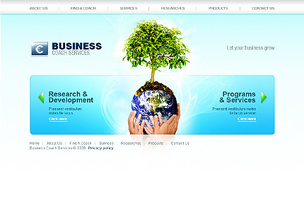 Flash site 24991 Business