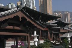Chi Lin Nunnery Hong Kong Dec 2011