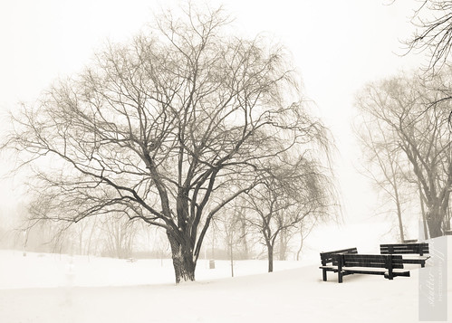 Snowstorm-13012012-1