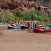 Grand Canyon National Park: Phantom Ranch Boat Beach 0039