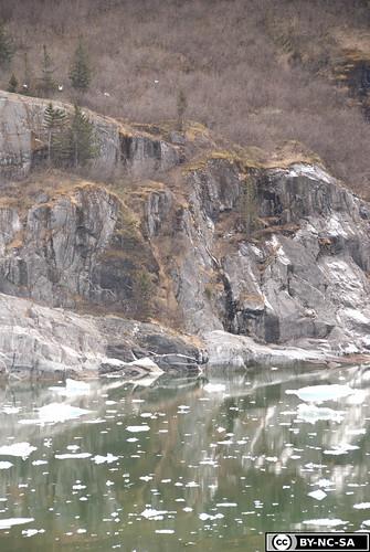 20110505-Alaska2011-D2-DSC_5234.jpg