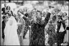 Confetti - Edward Olive fotografo bodas